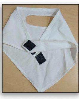 Mask Handkerchief2